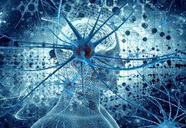 Cientistas começas a desvendas os mistérios da consciência humana