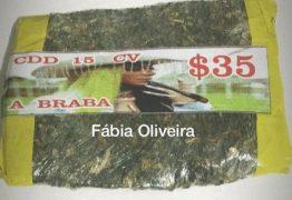 Tráfico do Rio estampa rosto de Ludmilla em malotes da 'verdinha'