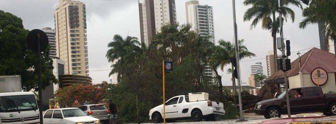 Veja as áreas mais castigadas pelas chuvas em Campina Grande