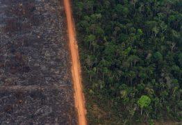 DADOS DO INPE: Focos de queimadas na Amazônia aumentaram 30% em 2019