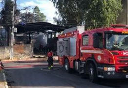 Animais morrem após incêndio atingir galpão de reciclagem na Zona Sul de JP