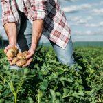 desperdicio na agricultura como evitar as causas mais comuns 150x150 - Mais de R$ 316 milhões serão destinados a agricultores e produtores rurais da PB em 2020