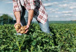 Mais de R$ 316 milhões serão destinados a agricultores e produtores rurais da PB em 2020