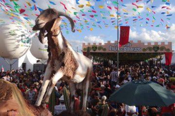 Lançamento da Festa do Bode Rei acontece neste sábado