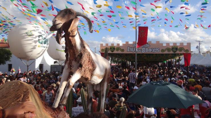 images 3 3 - Lançamento da Festa do Bode Rei acontece neste sábado
