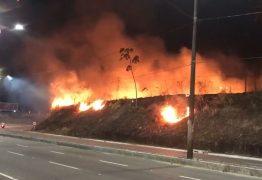 Incêndio atinge área de vegetação às margens ds BR-230 em João Pessoa