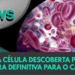 maxresdefault 6 150x150 - Nova célula descoberta pode ser a cura definitiva para o câncer