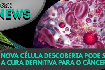 maxresdefault 6 360x240 - Nova célula descoberta pode ser a cura definitiva para o câncer