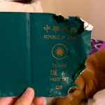 passaporte7 2 1 150x150 - 'ANJO DA GUARDA': Mulher se livra de viagem ao epicentro do coronavírus após cachorro morder passaporte