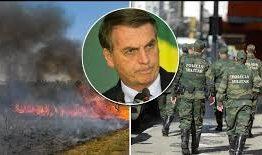 Bolsonaro deu aval para destruir Amazônia e para polícia matar, diz ONG