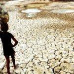 transferir 10 150x150 - Relatório da Agência Nacional das Águas aponta seca em todo estado da Paraíba