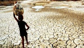 transferir 10 - Relatório da Agência Nacional das Águas aponta seca em todo estado da Paraíba