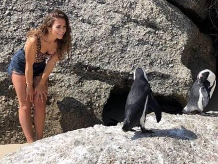 xblog steph penguins.jpg.pagespeed.ic .68udf1ng7  - Youtuber se desculpa por se aproximar de pinguins acasalando para fazer selfie