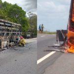 nibus pega fogo 150x150 - Ônibus da Rio Tinto com 30 passageiros pega fogo na BR-230 - VEJA VÍDEO