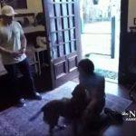 amor canino 150x150 - QUASE UM ANO DE SAUDADE: Vídeo de reencontro de astronauta com cadela viraliza na internet