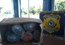 Homem é preso com 5kg de maconha que seriam levados de João Pessoa para região da Praia de Pipa