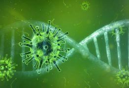 Após restabelecimento de sistema do SUS, Estado contabiliza 33.382 casos de coronavírus