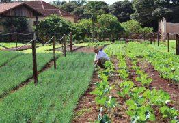 CORONAVÍRUS: agricultores de 21 municípios da Paraíba recebem R$ 850 de Garantia-Safra