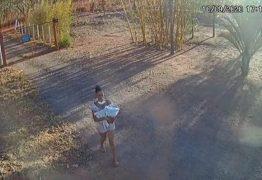 Câmeras de segurança registram momento em que mulher abandona bebê em matagal – VEJA VÍDEO