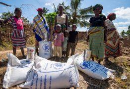 Nobel da Paz 2020 vai para o Programa Mundial de Alimentação