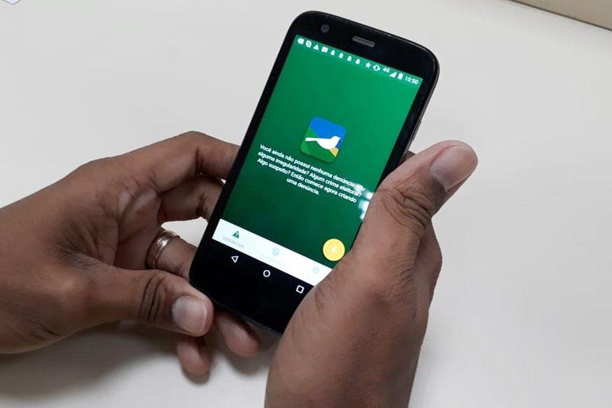 pardal aplicativo tre paraiba - Aplicativo Pardal já registrou 378 denúncias de irregularidades eleitoral em menos de três semanas na Paraíba