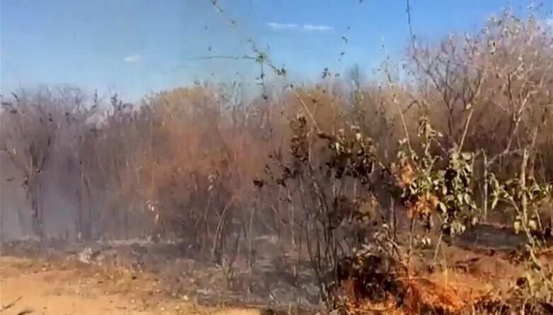 quima 782x445 1 - População registra queimadas em cidades do Vale do Piancó