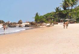PARAÍBA: Homem é detido acusado de fotografar mulheres em praia naturista