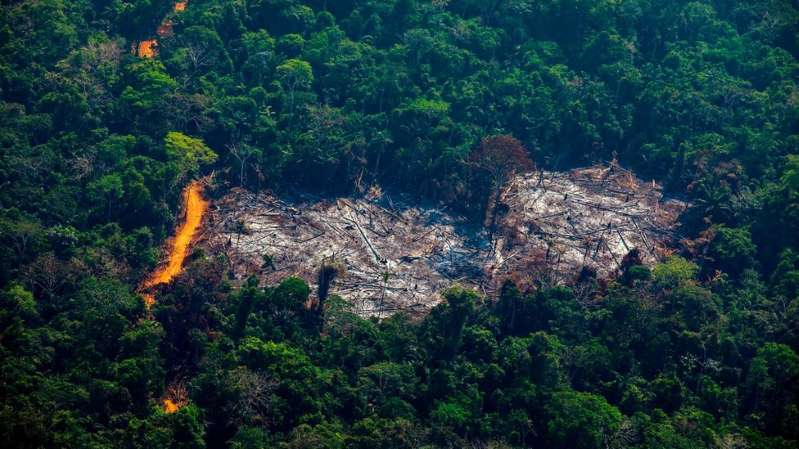 BB1bvklF - Desmatamento na Amazônia cresce 9,5% e chega a valor mais alto desde 2008