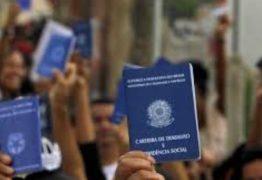 Taxa de desemprego no Brasil é de 14 milhões, afirma IBGE