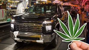 maconha gm 300x169 - GM proíbe o consumo de maconha, exige teste toxicológico e enfrenta falta de funcionários nas fábricas