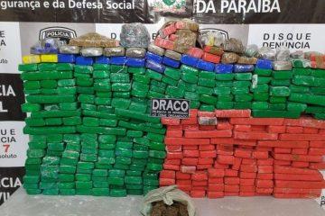 drogas policia civil 360x240 - Polícia Civil apreende cerca de 350 quilos de maconha em sítio no Sertão da Paraíba