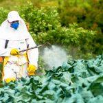 istock 503140566 150x150 - Brasil libera agrotóxicos banidos há mais de 20 anos na Europa
