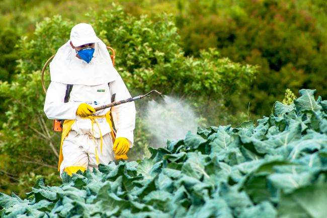 Brasil libera agrotóxicos banidos há mais de 20 anos na Europa