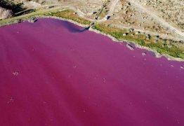 Poluição deixa lagoa rosa brilhante na Patagônia