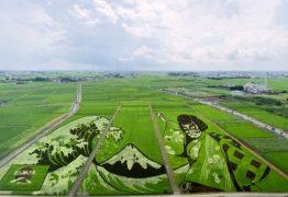 Cidade japonesa transforma arrozais em obras de arte para homenagear Jogos Olímpicos