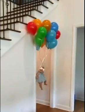 ebe - Mulher grita ao ver bebê 'voando' com balões, e desfecho surpreende - VEJA VÍDEO