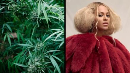 f348266a28f59b5163e889d19271048c - Beyoncé diz que cultiva maconha em fazenda e usa para combater estresse