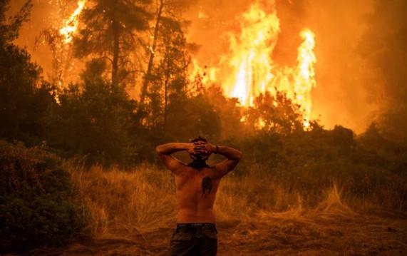 ilha - Ilha de Eubeia, na Grécia, é tomada por incêndios florestais: 'Não sobrou nada' - VEJA IMAGENS DO RESGATE