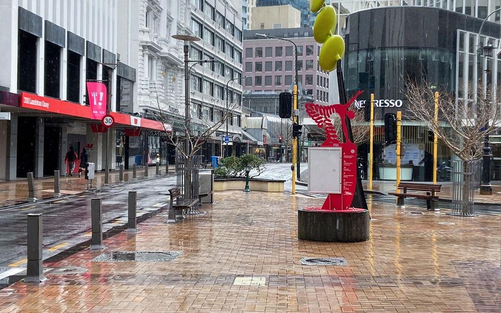 nova zelandia - Protesto contra lockdown atrai um único manifestante na Nova Zelândia; casos de covid estão diminuindo
