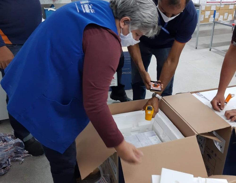 pfizer - COVID-19: mais de 62 mil doses de vacinas da Pfizer chegam à Paraíba nesta terça
