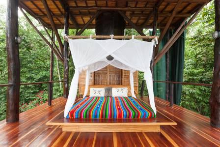 xblog jaguar.jpg.pagespeed.ic .MDKNmH7UTc - DIÁRIA DE R$ 4.800: Busca por hospedagem em casas em árvores dispara na pandemia