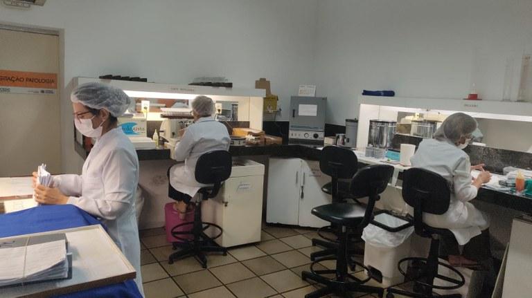 09405603 cfb8 40ed bf5b 53df90ccb30b - CEDC garante biópsia para toda mulher com lesão suspeita de câncer de mama