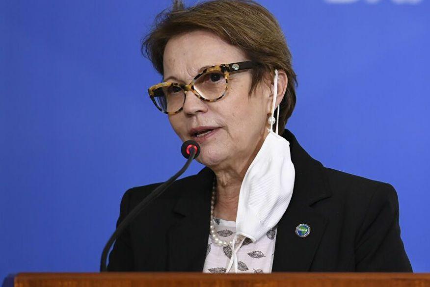 16219613 0 198 3072 1860 1000x541 80 0 0 1ed6c261b563ec50686718a7e5e0a039 - Ministra Tereza Cristina testa positivo para a Covid-19