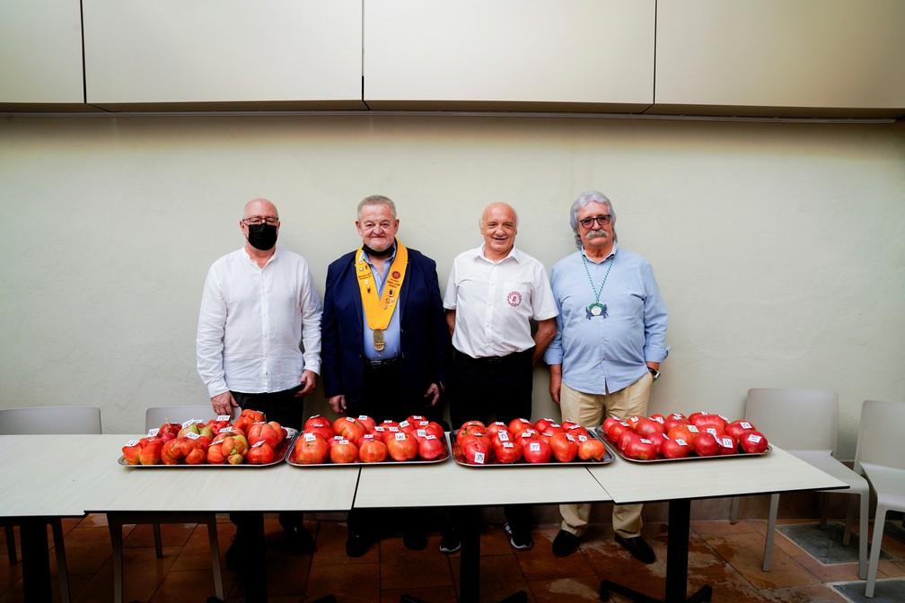 2021 09 12t150922z 2016561444 rc29op9ealck rtrmadp 3 spain uglytomato - Agricultores competem pelo título de 'tomate mais feio' na Espanha