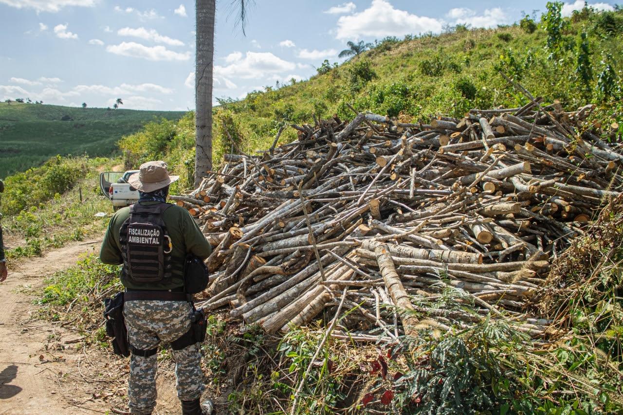 912ac23750b50982b525854f7546c8d9 - Operação 'Mata Atlântica em Pé' identifica seis pontos de desmatamento na Paraíba
