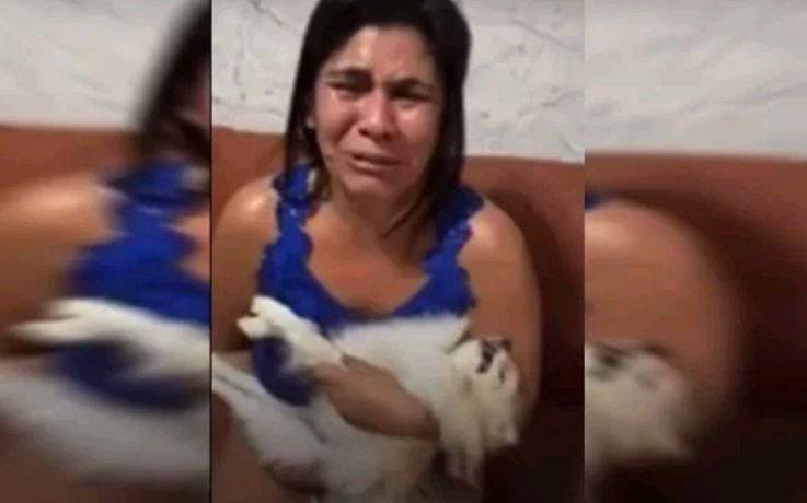 Capturar 56 - Mulher recebe cachorro morto após banho em pet shop e se desespera