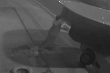 Capturar.JPGkk  3 360x240 - Criminosos usam picape para roubar piscina de 5 metros