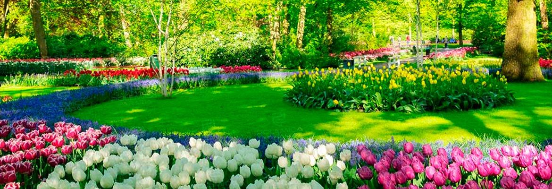 WhatsApp Image 2021 09 22 at 17.03.23 - EQUINÓCIO DE PRIMAVERA: Saiba quais a mudanças devem acontecer nos próximos três meses na estação das flores