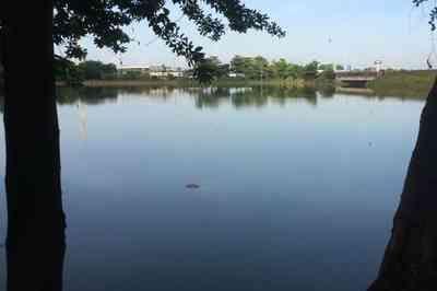 csm tres lagoas em joao pessoa corpo encontrado 5f89e6fd5d - Corpo de homem é encontrado nas Três Lagoas em João Pessoa