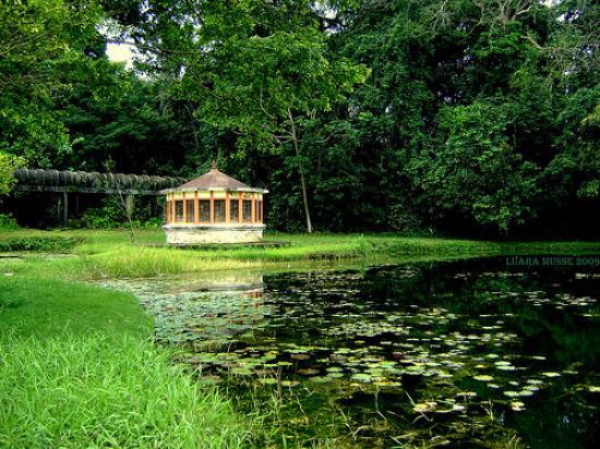parque botanico de joao - PONTOS DA PAIXÃO: motéis, restaurantes ou locais turísticos; conheça os melhores lugares de JP para um encontro romântico